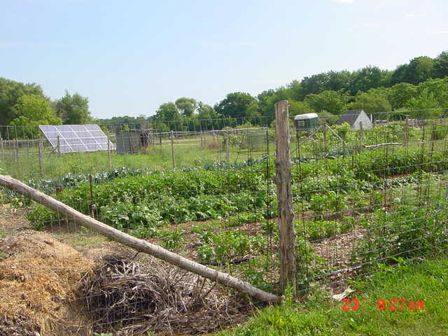 Fenced in Vegetable Garden - solar panels in background