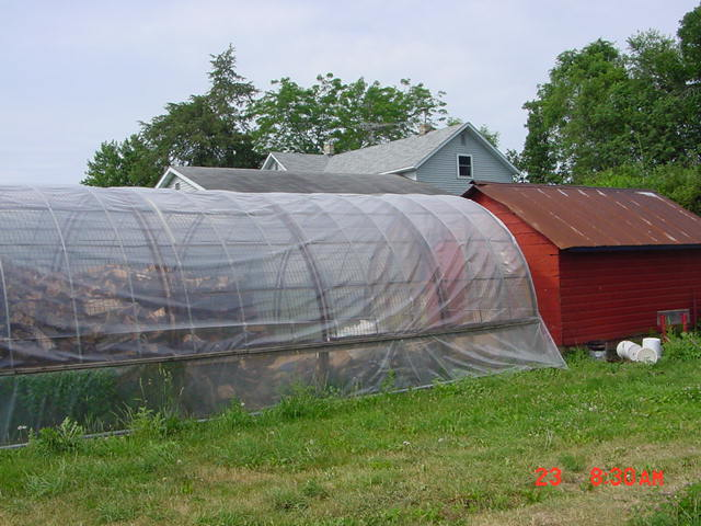 Wood drying greenhouse, tack shed for horse and gardening supplies